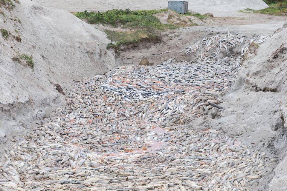 Slutprodukt waste